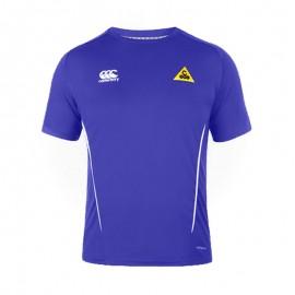 Camiseta técnica de padel Team 2016